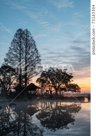 Seinoike (dawn) 73183304