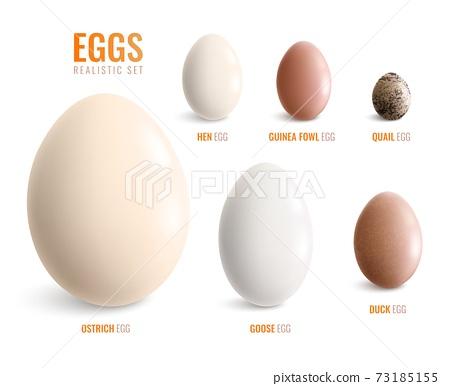 Colored Realistic Eggs Icon Set 73185155