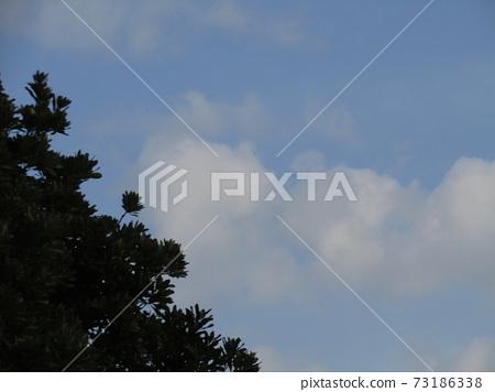 十二月藍天白雲 73186338