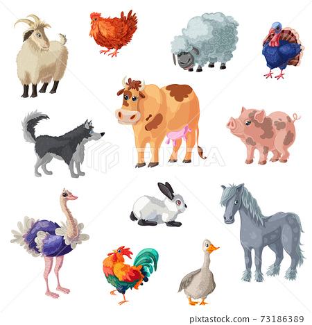 Cartoon Farm Animals Set 73186389