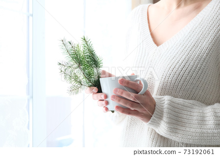 A Christmas tree in the hands of a girl in a white knitted sweater. Minimalism. Cozy winter, New Year. 73192061
