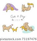 寵物/貓和狗的姿勢 73197476