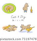 寵物/貓和狗的姿勢 73197478