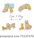 寵物/貓和狗的姿勢 73197479
