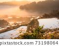 《新潟縣》星橋和O海梯田的黎明 73198064