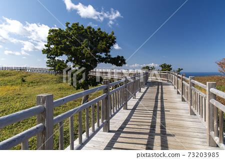 홋카이도 시레토코 국립 공원 知床五湖 73203985