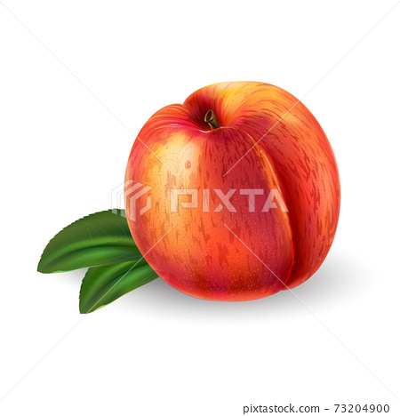 Peach with leaves on a white background. 73204900