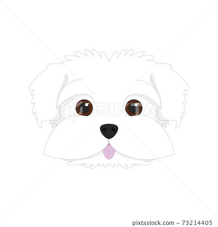 Maltese dog isolated on white background vector illustration 73214405