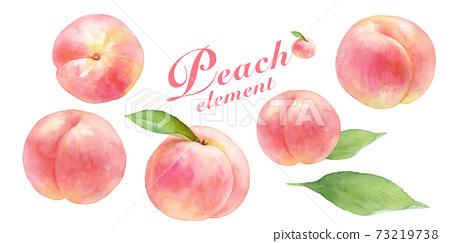 成熟多汁的桃水彩插圖集。白桃。用樹葉。 73219738