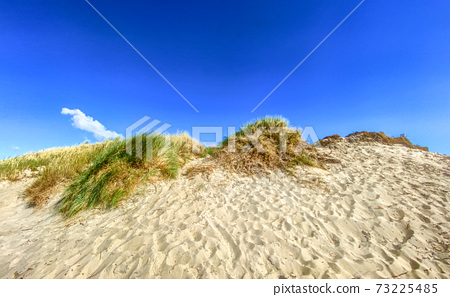 Beautiful landscape with a sand dune and a lonely cloud on the blue sky 73225485