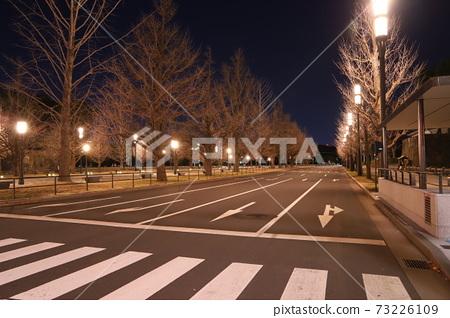 從皇宮到東京站的主要街道上定期排列的冷樹 73226109