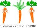 Beautiful carrot in illustrator 73228981