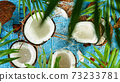 Coconuts with palm branch on wooden table 73233781