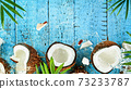 Coconuts with palm branch on wooden table 73233787