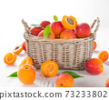 Fresh apricots on wooden table 73233802