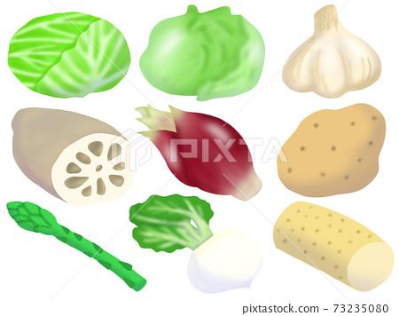 蔬菜套裝(無主線) 73235080