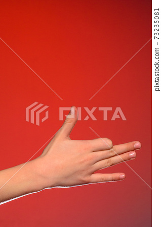 Human hand, isolated on a red background showing the dog's sign, symbolizing the friendship of the animal and man 73235081