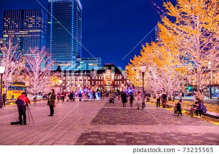 도쿄역 은행 가로수와 조명 73235565