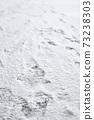 눈,발자국,폭설,한국 73238303