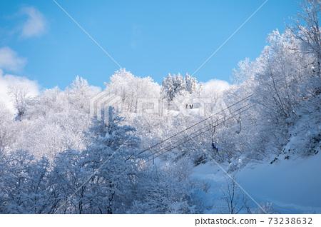 立山徒步滑雪場的景色 73238632