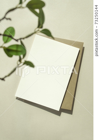 卡模擬與卡其色背景上的植物 73250144