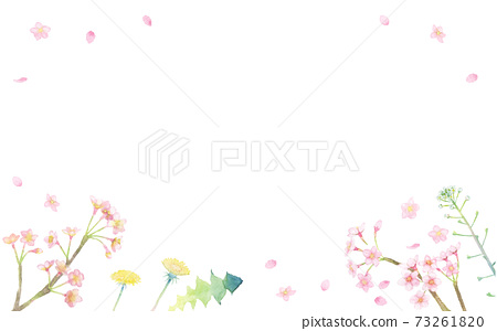 <Frame material> Spring frame decorated with cherry blossoms, dandelions, and shepherd's purse drawn in watercolor 73261820