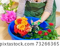 Woman cutting roses in bowl with water 73266365
