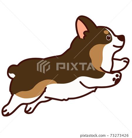 簡單和可愛的柯基犬圖片與主線運行黑貂色 73273426