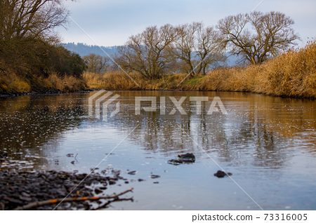 river, lake, landscape 73316005