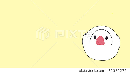 White Java Sparrow Eye Catch Yellow 73323272