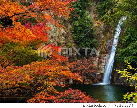 秋天的落葉和努諾比基瀑布(女瀑布) 73331074