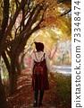 가을나들이,가을길 73348474