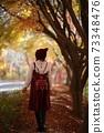 가을나들이,가을길 73348476