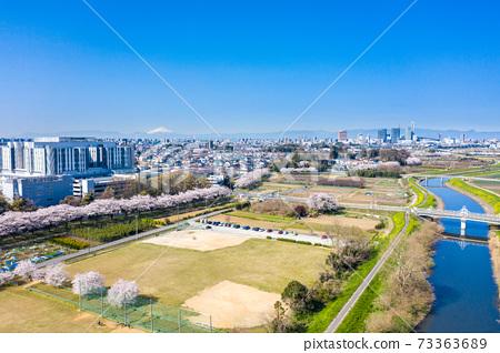 """鳥瞰"""" Sa玉縣"""" Minuma稻田櫻花走廊 73363689"""