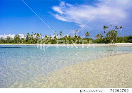 民丹島上美麗的珊瑚礁海 73366796