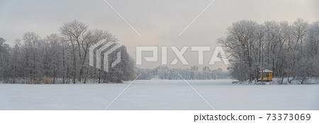 snowy winter forest 73373069