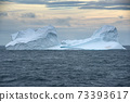 Floating Iceberg With A Colony Of Gentoo Penguins At Sunset In Bransfield Strait Near The Northern Tip Of The Antarctic Peninsula 73393617