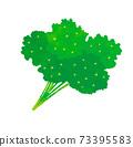 香菜 73395583