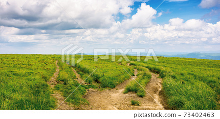 path through green grassy mountain meadow. beautiful summer landscape. fine weather with fluffy clouds on the blue sky 73402463