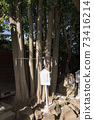 """我第一次去千葉縣的"""" Kemigawa Shrine"""" 73416214"""