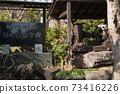 """我第一次去千葉縣的"""" Kemigawa Shrine"""" 73416226"""