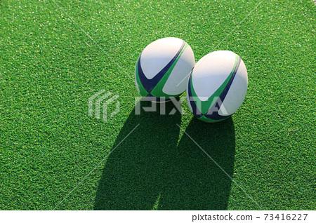在草坪上的兩個橄欖球球 73416227