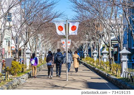 [가나가와 현] 가마쿠라 정초 3 일간의 段葛 73419135