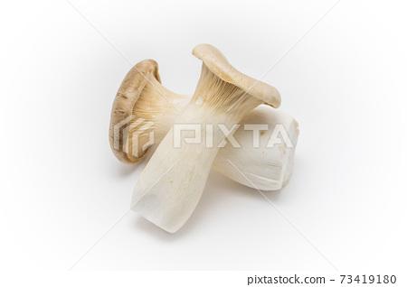 蔬菜:蘑菇蘑菇 73419180