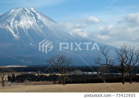 富士山腳下的朝霧高原 73422935