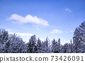 Blue sky in a snowy country 73426091