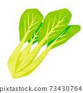 白菜 73430764