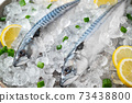 fresh mackerel on crushed ice with lemon 73438800