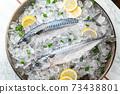 fresh mackerel on crushed ice with lemon 73438801