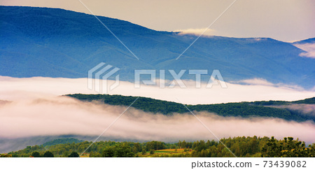 glowing fog in the rural valley at dawn. beautiful mountain landscape in springtime. view from the hill 73439082